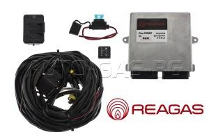 REAGAS - 2568D